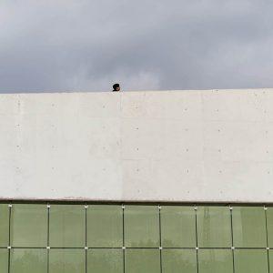 galeria-projectesfoto-1